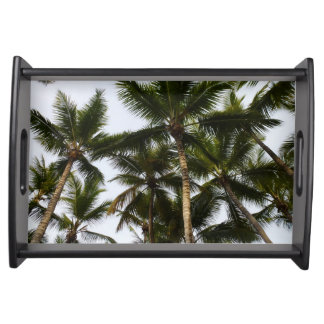 Tropical summer palm trees serving tray