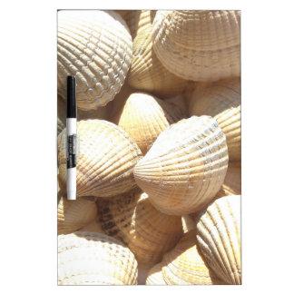 Tropical Sunny Exotic Sea Shells Dry Erase White Board