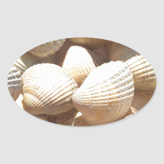 Tropical Sunny Exotic Sea Shells Oval Sticker