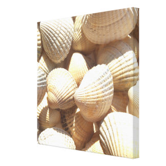 Tropical Sunny Sea Shells Beach Summer Canvas