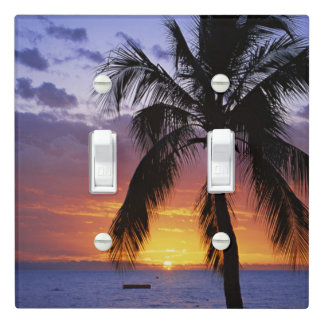 Tropical Sunset with Palm Tree Light Switch Cover