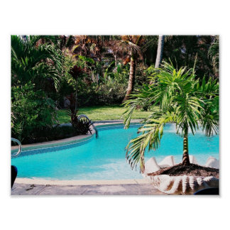 Tropical Swimming Pool Poster