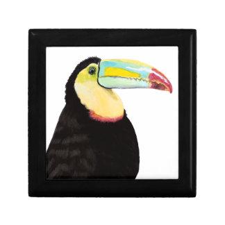 Tropical Toucan Bird Gift Box