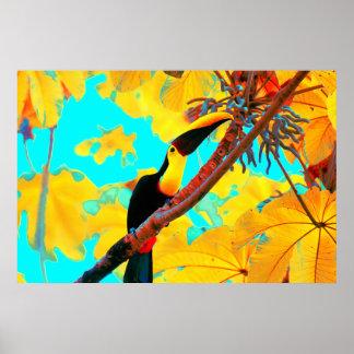 Tropical Toucan Bird Poster