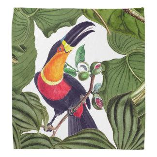 Tropical Toucan Bird Wildlife Animal Bandana