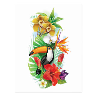 Tropical Toucan Collage (left) Postcard