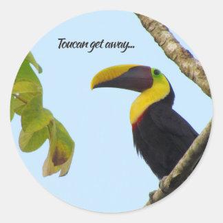 Tropical Toucan Get Away Sticker