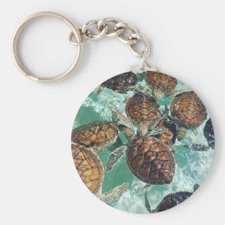 Tropical Turtles (Kimberly Turnbull Photography) Keychain