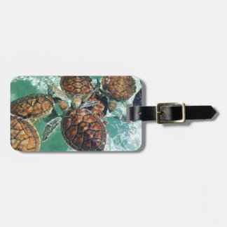 Tropical Turtles (Kimberly Turnbull Photography) Luggage Tag