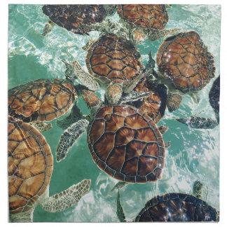 Tropical Turtles (Kimberly Turnbull Photography) Napkin