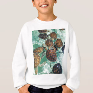 Tropical Turtles (Kimberly Turnbull Photography) Sweatshirt