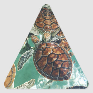 Tropical Turtles (Kimberly Turnbull Photography) Triangle Sticker