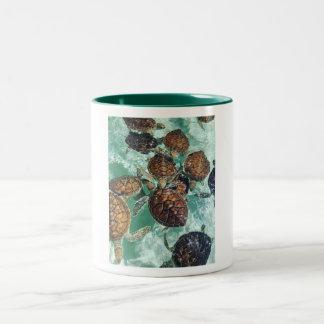 Tropical Turtles (Kimberly Turnbull Photography) Two-Tone Coffee Mug