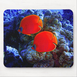 Tropical Undersea Fish Swimming In Coral Mouse Pad