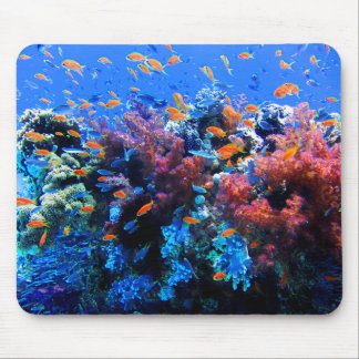 Tropical Underwater Ecosystem Mouse Pad
