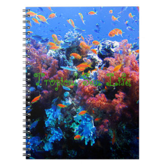 Tropical Underwater Ecosystem Notebook