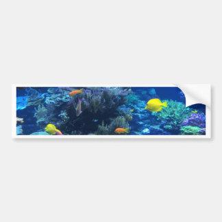 Tropical underwater fish bumper sticker