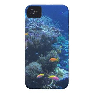 Tropical underwater fish iPhone 4 Case-Mate cases