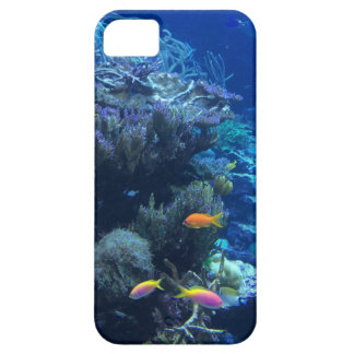 Tropical underwater fish iPhone 5 covers