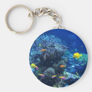 Tropical underwater fish keychain