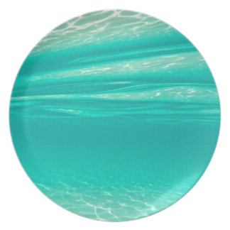 Tropical Vibe Party Plates