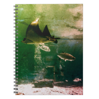 Tropical Water Notebook
