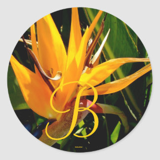 Tropical Wedding Bird of Paradise Monogram B Seal Round Sticker