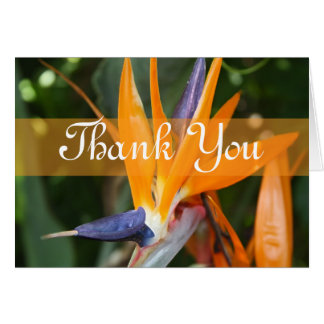 Tropical Wedding Thank You Card