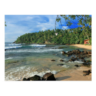 Tropical white sand beach south coast Sri Lanka Postcard