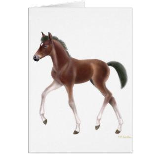 Trotting Foal Card