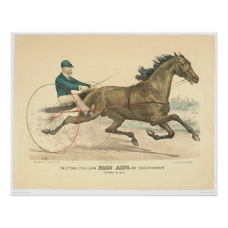 Trotting stallion Palo Alto by Electioneer (1791A) Poster