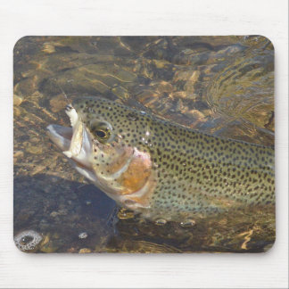 Trout Caught On A White Worm Mouse Pad