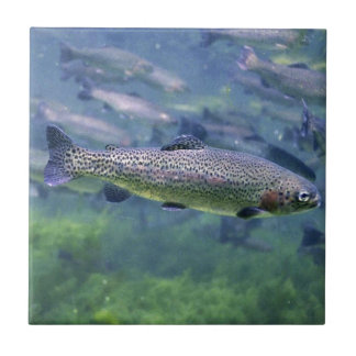 Trout fishermens gifts tile