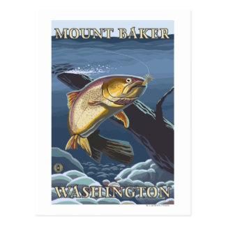 Trout Fishing Cross-Section - Mount Baker, WA Postcard