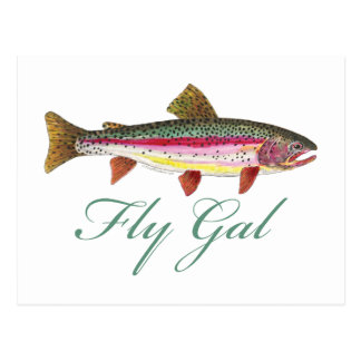 Trout Fly Fishing Postcard