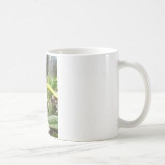 trout lily mug
