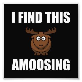 Trouvez cet orignal d'Amoosing Impression Photographique