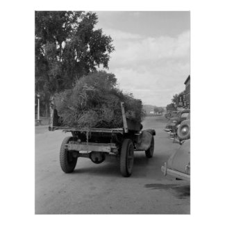 Truckload of Tumbleweed, 1939 Poster