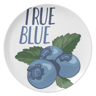 True Blue Party Plates