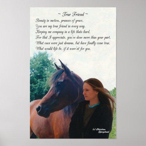 Arabian Horse Poems