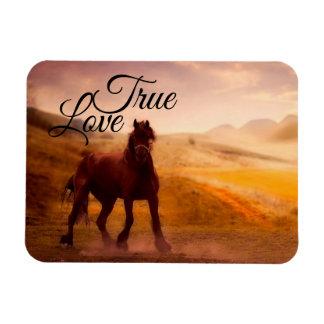 True Love Horse Magnet