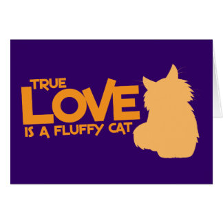 TRUE LOVE is a fluffy cat Card