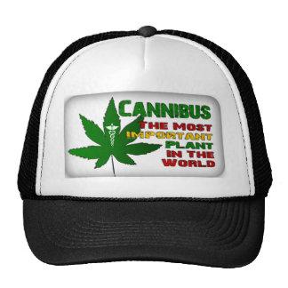 True Nubia Gear & Merchandise Hat