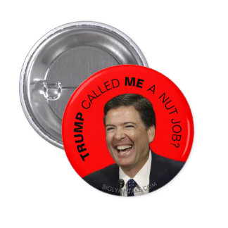 TRUMP CALLED ME A NUT JOB? 1 INCH ROUND BUTTON
