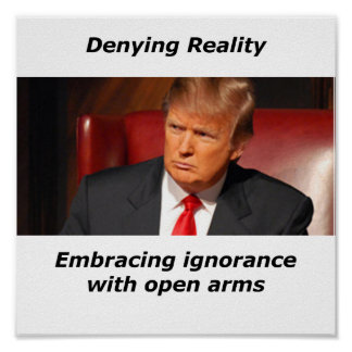 Trump Denying Reality Poster