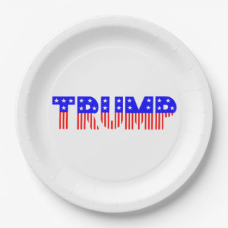 "TRUMP Presidential Election 9"" Paper Plates"