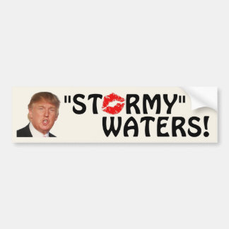 "Trump - ""Stormy"" Waters! Bumper Sticker"