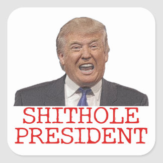 Trump, the Shithole President Square Sticker