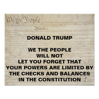 Trump We the People Checks and Balances Protest Poster