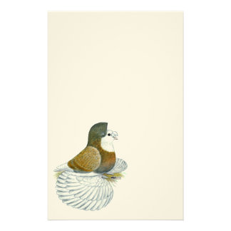 Trumpeter Pigeon AOC Baldhead Stationery